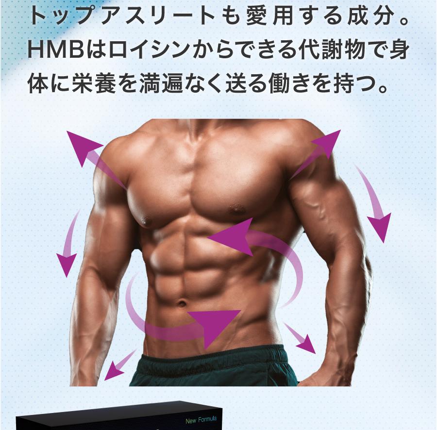 HMBロイシンの増強効果